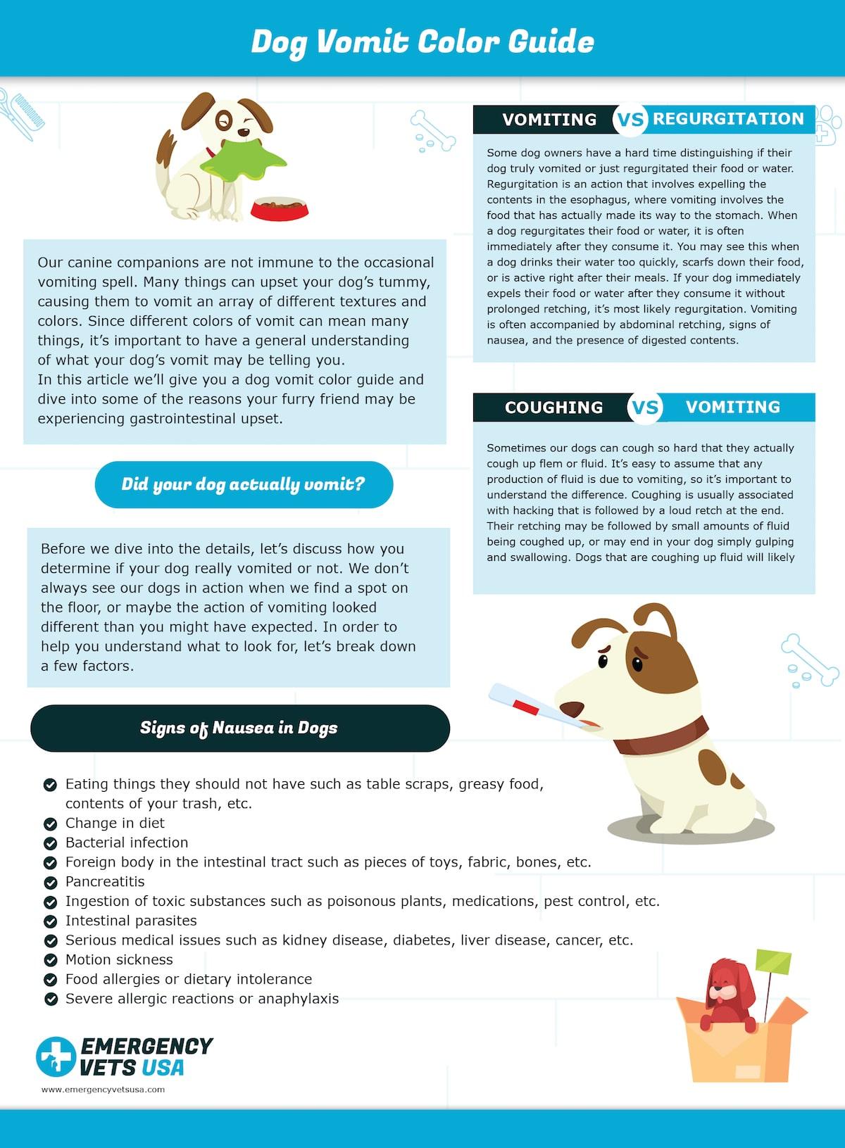 Dog Vomit Color Guide Chart