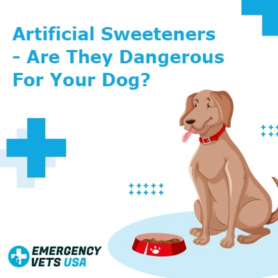 Artificial Sweeteners Dangerous For Dogs