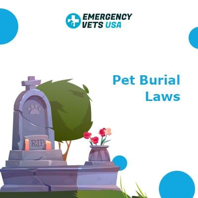 Pet Burial Laws
