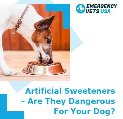 Sweeteners Dangerous For Your Dog
