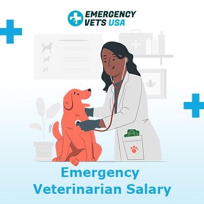 Emergency Veterinarian Salary