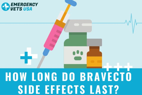 How Long Do Bravecto Side Effects Last