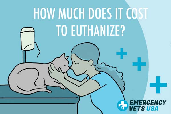 How Much Does It Cost To Euthanize A Pet