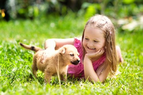Girl playing with her puppy